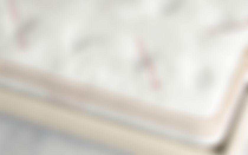 saatva mattress company label
